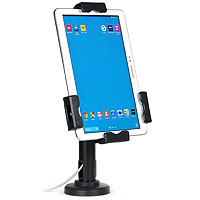Lockable iPad Tablet Desk or Wall Mount